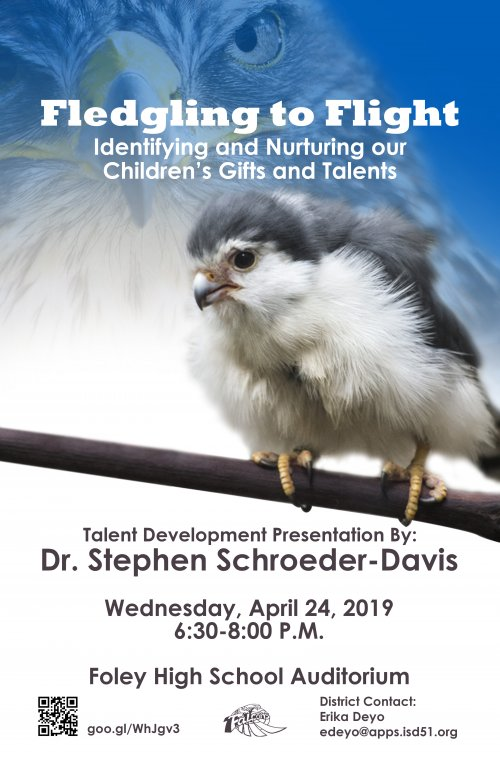 Fledgling to Flight: Identifying and Nurturing our Children's Gifts and Talents